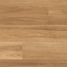 LLP317 Lemon Spotted Gum